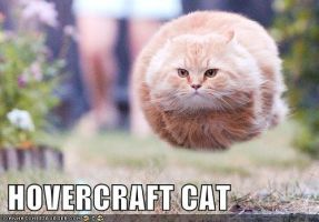 Hovercraft cat damn by wouluf6