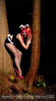 Bunny in a tree by thepoz