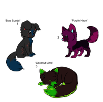 Chibi Fox Adopts - Adopted by Feralx1