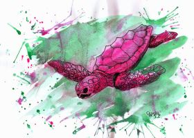 Seaturtle by Cindy-R