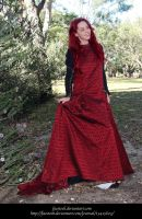 Rose Red19 by faestock