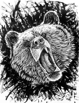 bear Roar by TiGreArt