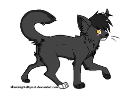 Wolfpaw's Ref by snug-glasses