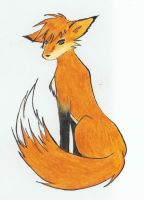 Strange Fox by ann-anime-chan