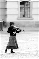 Violin in Berlin by OliverJules