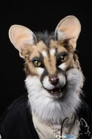 Fursuit Portrait - Joker by FotoFurNL