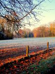 autumn-winter by Daydreamer-x