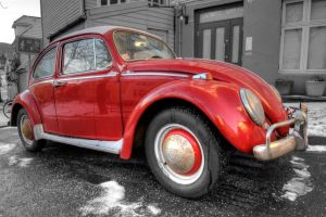 Love Beetle by Elicice