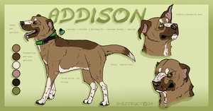 Addison Reference by d-estruct