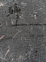 Screen by kizistock