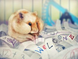 Hamster Welcome by IngridTan