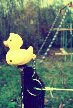 Duck Swing by OlaMarion