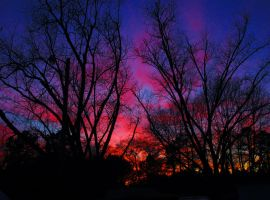 Feb 6 2015 sunset by HomeOfBluAndshadows