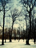 A Hazy Shade of Winter by MadRed