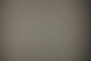 shadow wall two by waterweed-stock