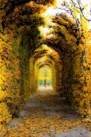 Autumn Corridor by Xrisoka