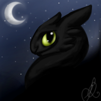 Toothless by CrazyHearts