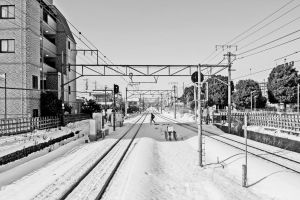 SNOW TRACKS by xACook