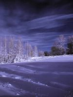 Blue Sky Infrared by Ryderrr