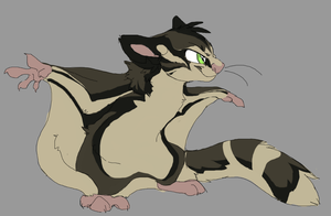 Sugar Glider Design -CO- by MBPanther