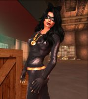 My Next 25...  Catwoman (TV version) 3 by EthereaS