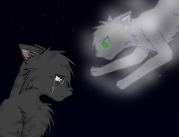 Jayfeather Half Moon ::Forever:: by CrystleWhiteWolf