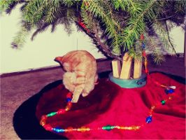 Christmas Kitty by Before-I-Sleep
