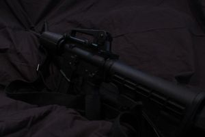 DPMS Carbine by ShadowGyrlBrice