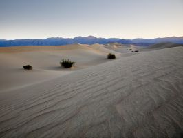 Stovepipe Wells Dunes - Morn by themobius