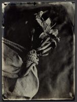 wet plate collodion edges by mjranum-stock
