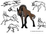 Maned Wolf by ricenator