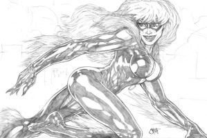 Blackcat by Whispering-Road