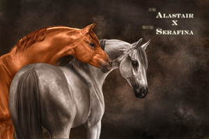 CS Alastair x WCS Serafina by Jazuac