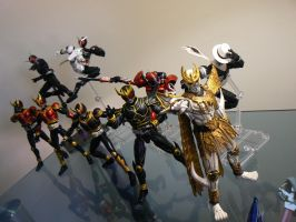 SH Figuarts Collection by lupesisagundam