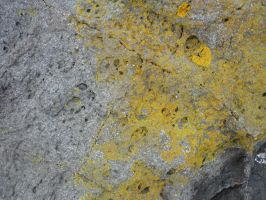 Rock Texture 3 by ennoeaadvent
