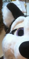 Archie Refurb Teaser by PawthenticCreations