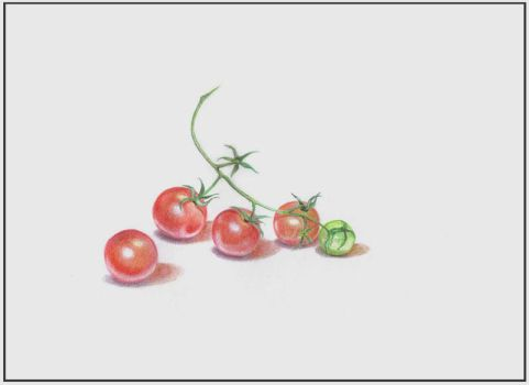 Cherry Tomatoes by 11-73-3-33