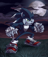 Sonic Unleashed by Re-RD-Re