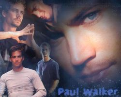 Paul Walker collage 2 by shutterbugrunner