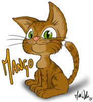 My cat Mango + Speed Drawing by zones-productions