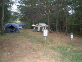 Upper camping area by steward