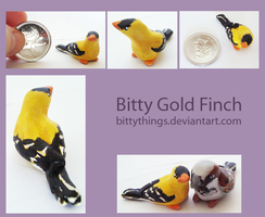 Bitty Gold Finch - GIFT by Bittythings