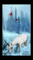 The Last Unicorn by FairieGoodMother