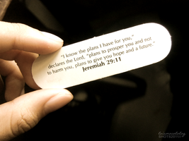 Jeremiah 29:11. by monsterseverywhere
