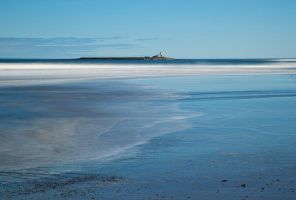 Coquet Island by scotto