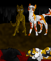 WLL competition entry by Willowrainflower
