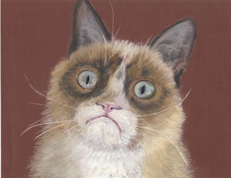 Tardar Sauce a.k.a. Grumpy Cat, pastel by LuthienneTinuvielle