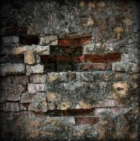 Another Brick in the Wall by tholang