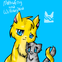 Mothwing and Willowpaw by Kitzophrenic