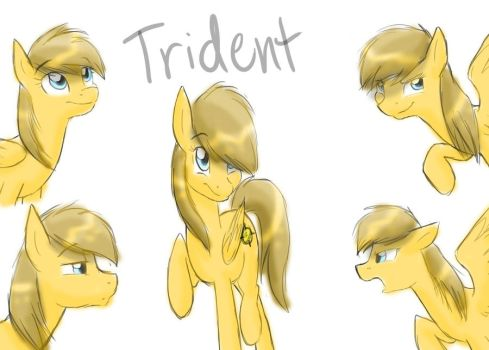 OC Request: Trident by Bluefeathercat